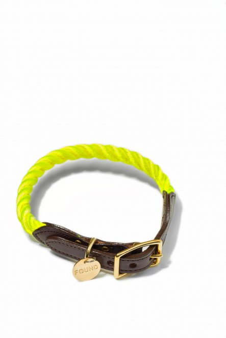 Nylon collar_Yellow