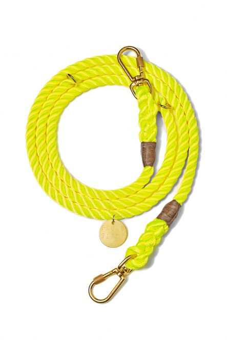 Nylon leash_Yellow
