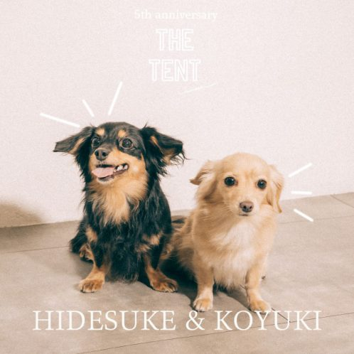 hidesuke_koyuki
