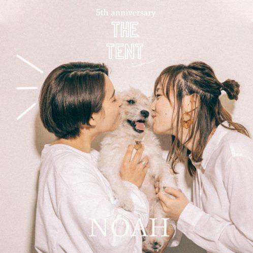 noah_fukui