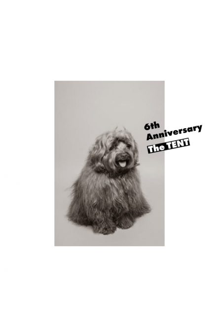 6th_anniversary_表-1